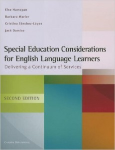 Special Education Considerations Book Pic